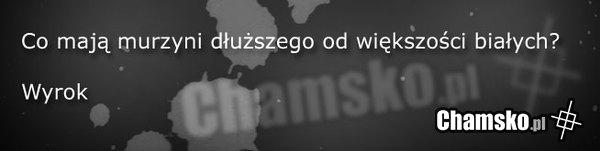 [Obrazek: 0_1_54121_Dlugosc_przez_abando.jpg]