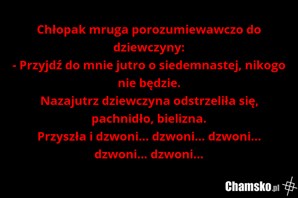 [Obrazek: 0_1_65291_Laska_przez_vk62.png]