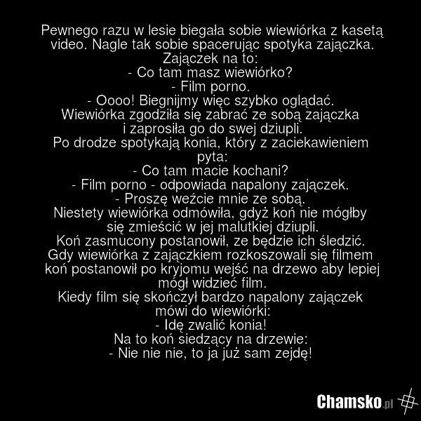 [Obrazek: 0_1_67575_Wiewiorka_i_erotyczna_kaseta_przez_abando.png]