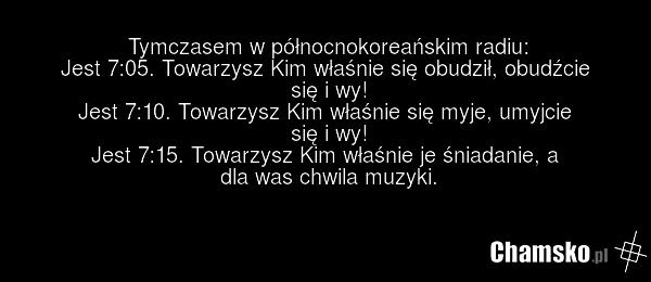 [Obrazek: 0_1_82692_Radio_z_rana_przez_pluszowymis.png]