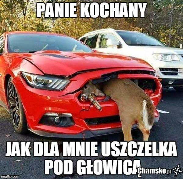 0_1_86677_Dobry_mechanik_przez_pluszowym