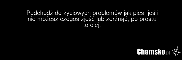 [Obrazek: 0_1_89423_zyciowe_problemy_przez_pluszowymis.png]
